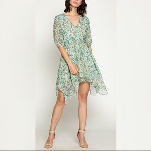 Walter Baker Cyrus Monarch Floral Dress Small